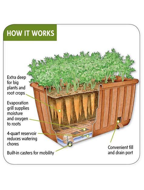 self watering vegetable garden self watering patio planter