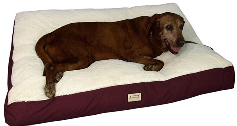 sofa style orthopedic pet bed mattress snoozer overstuffed sofa pet bed drs foster u0026 smith