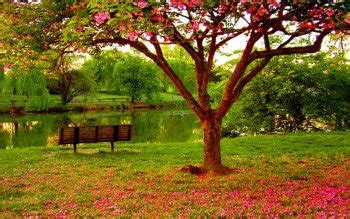 wallpaper abyss spring 1412 spring hd wallpapers background images wallpaper