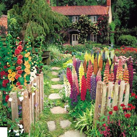 cottage garden seeds cottage garden seed collection
