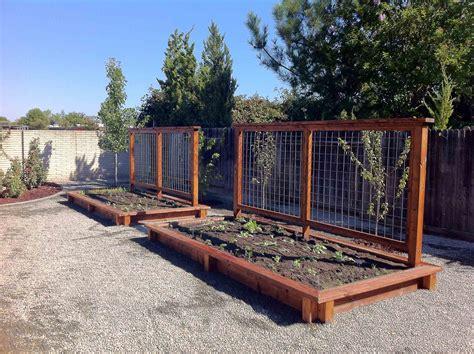 starting a vegetable garden from scratch 100 starting a vegetable garden from scratch how to