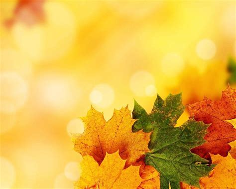 Free Autumn Backgrounds Wallpaper Cave Fall Powerpoint Background