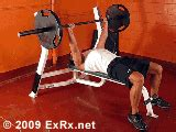 bench press exrx barbell bench press