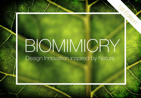 Home Design Challenge by Biomimicry Eleven Magazine
