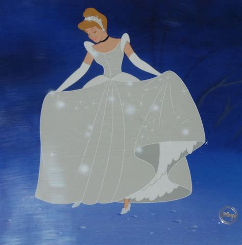 cinderella s cinderella s magic night animation sensations