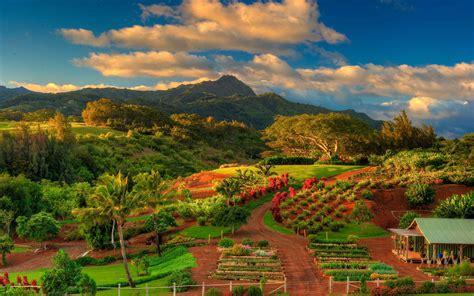 2560x1600 Kauai Hawaii, Garden, Landscape Garden