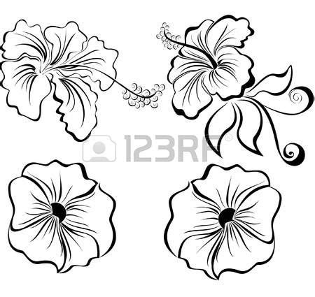 imagenes de flores en blanco y negro best 20 dibujos blanco y negro ideas on pinterest