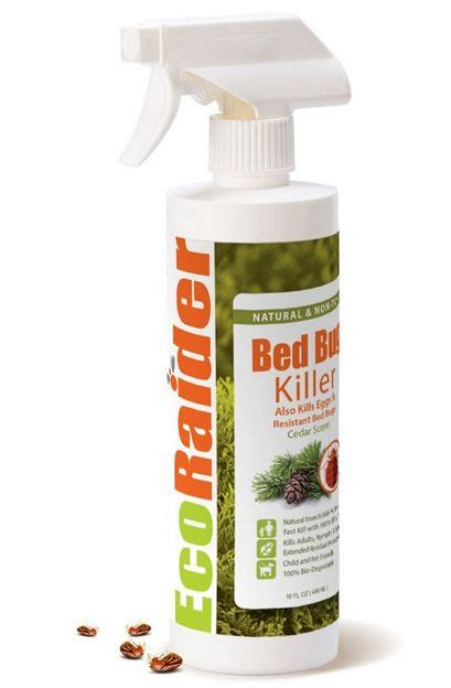 does baking soda kill bed bugs 25 best ideas about killing bed bugs on pinterest what