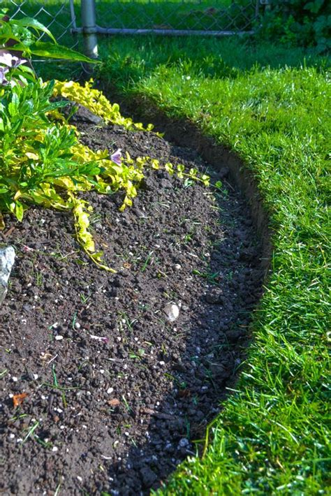 flower bed edger 1000 ideas about lawn edging on pinterest plastic lawn