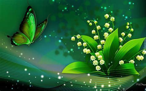 light image resizer des photos des photos de fond fond dcran grafika 2d motyl motylek konwalie