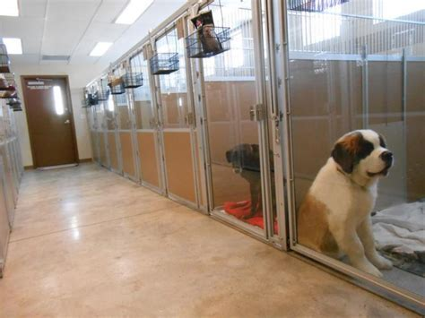 Kennels & Catteries   Heating for all solutions