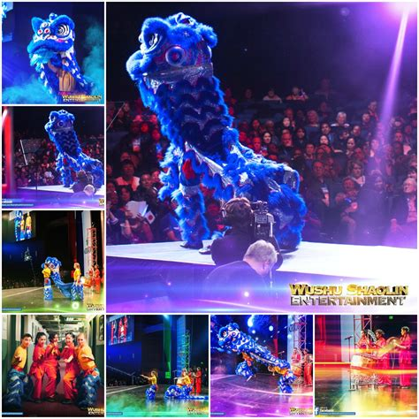 online store caam chinese dance theater lion dance bookings booking info dragon dance dragon