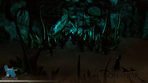 cave plants plants in a cave screenshot saturday image of nor