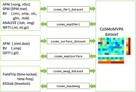 multivariate pattern analysis eeg frontiers cosmomvpa multi modal multivariate pattern