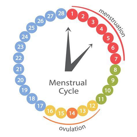 Calendrier Menstruel Progest 233 Rone Naturopathe Bordeaux