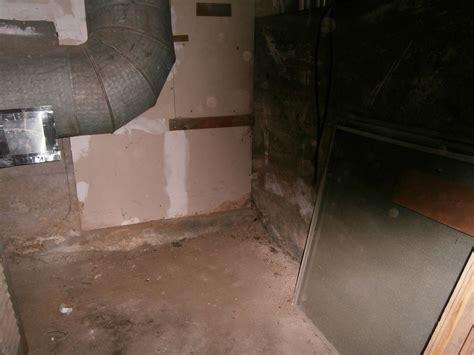 connecticut basement systems mold problems photo album