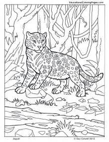 animal coloring pictures animal coloring pages kids