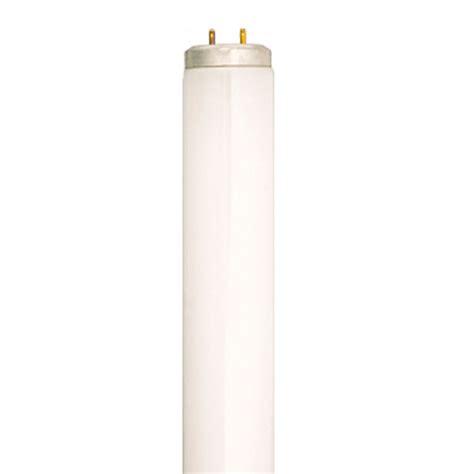full spectrum fluorescent light bulbs lowes shop sylvania 30 pack 40 watt 5 000k full spectrum