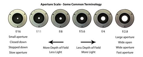 understanding depth of field a beginner s guide