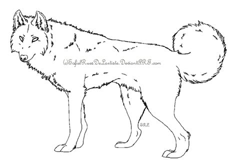 wolf template 1 by sofielruesdelartiste on deviantart