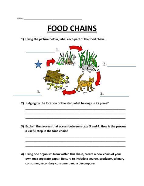 Food Web Worksheets by Worksheets Maloney S Edug 812 Website