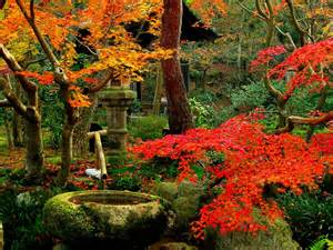 beautiful kyoto gardens japan world for travel