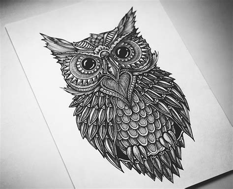 doodle owl doodle owl on behance