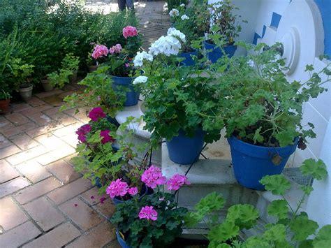 decorar jardines interiores jardines bonitos sencillos decoracion economicos imagenes