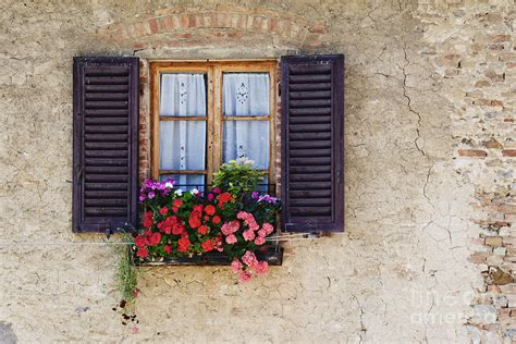 win with flower colorful flowers in window flower box photograph by jeremy