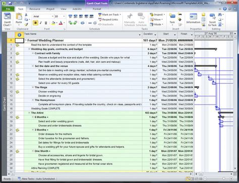 ms project templates 2010 microsoft project