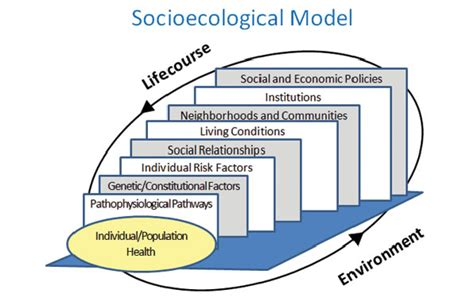modeling health and healthcare systems books social ecological model for change health systems
