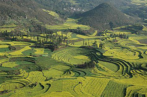 imagenes de paisajes incas 8 paisajes de monta 241 as en terrazas im 225 genes taringa