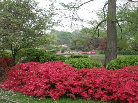 Botanical Garden Japan Pictures Of Missouri Botanical Garden Daniel C Lavery Author Former Naval Officer And
