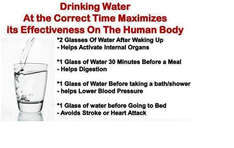 The Right Times To Drink Water For Maximum Health Benefits When Is The Best Time To Water My Vegetable Garden