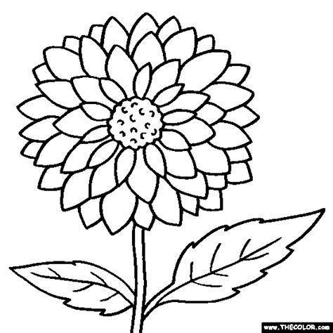 coloring pictures of flowers to print coloring pages flower coloring pages color flowers