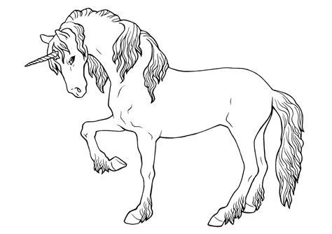 unicornio imagenes para pintar dibujos de caballos para colorear e imprimir gratis