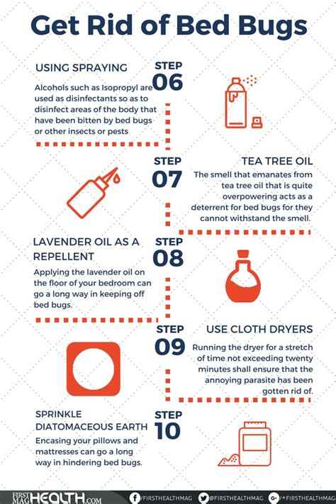 ideas  bed bug remedies  pinterest bed bug spray bed bugs hotels  bed bugs