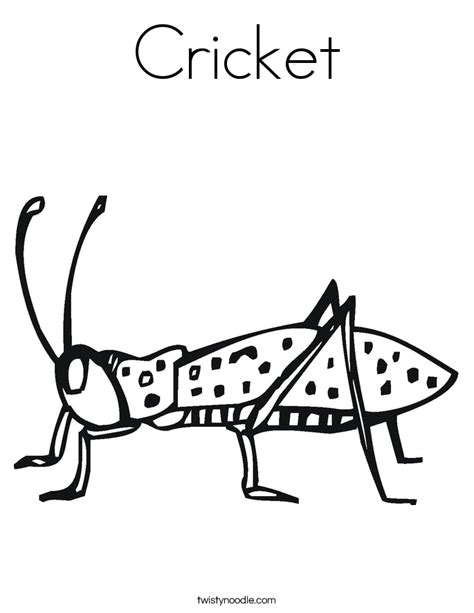 Cricket Colouring Pages Cricket Coloring Page Twisty Noodle by Cricket Colouring Pages