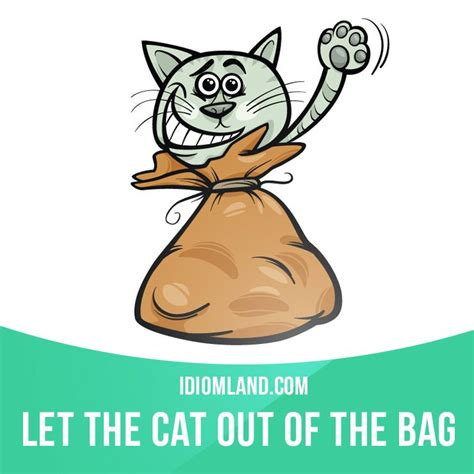let the cat out of the bag means to reveal a secret or