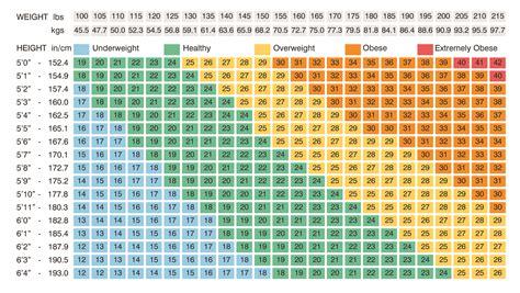 bmi tabelle bmi calculator slim
