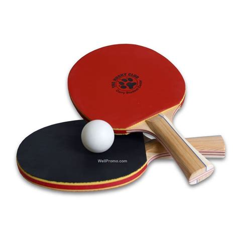 Raket Pingpong ping pong
