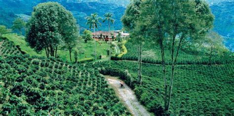 imagenes de paisajes naturales y culturales un recorrido por los paisajes culturales de colombia y