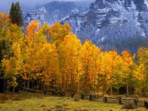 colorado color fall in the high country colorado picture fall in the