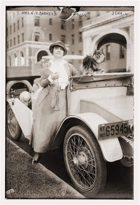 teapot pomeranian 17 best images about vintage hats on the road on cars and ohio