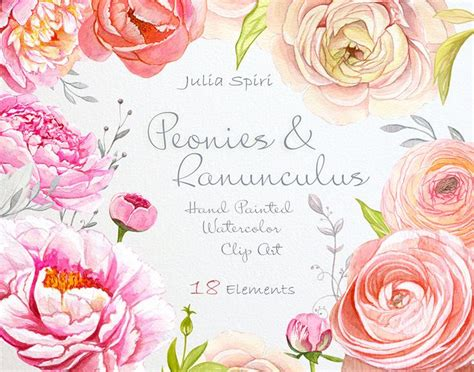 watercolor ranunculus tutorial 17 best images about watercolor flower clip art on
