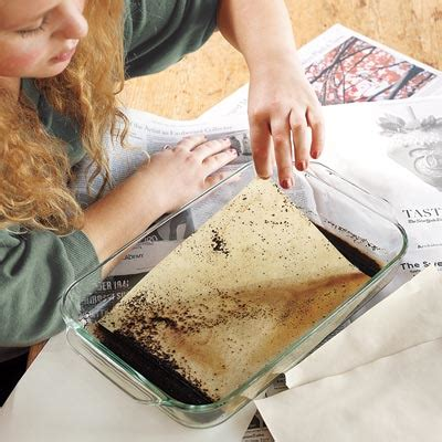 Make Paper Look With Coffee - biscotti goddess