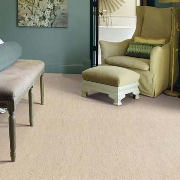 carl represents a manufacturer of floor coverings caress carpet by shaw newberry sc