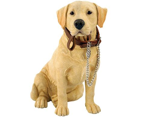 why are dogs called dogs ornamental yellow labrador review compare prices buy