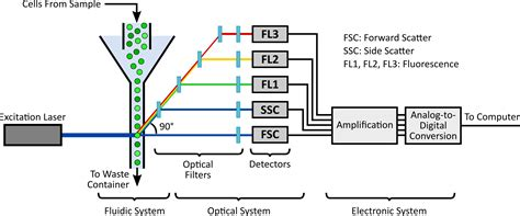 flow cytometry calibration flowcal software for analysis and calibration of flow