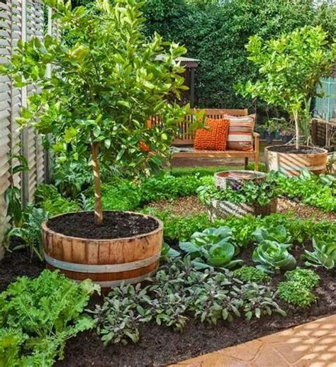 Edible Garden Ideas 25 Best Ideas About Whiskey Barrel Planter On Container Flowers Cottage Front Yard